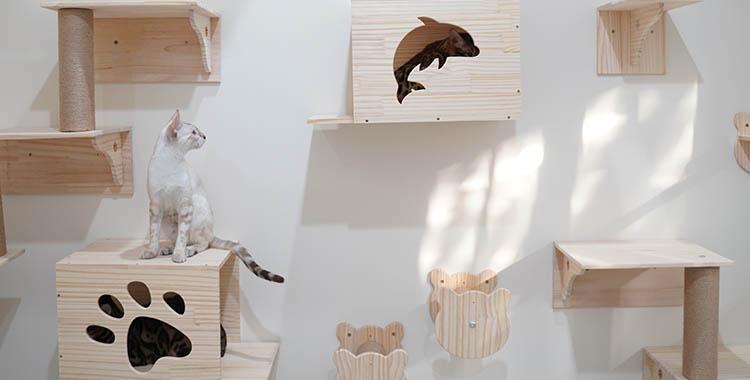 Mobília criada especialmente para gatos