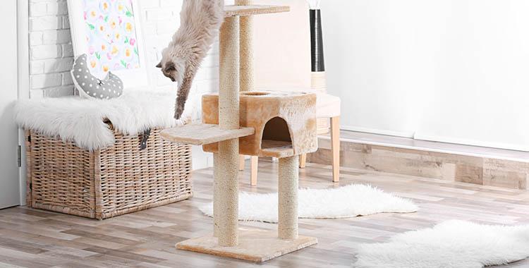 """Gato descendo de sua """"casinha"""" feita em madeira, uma mobília para pets."""